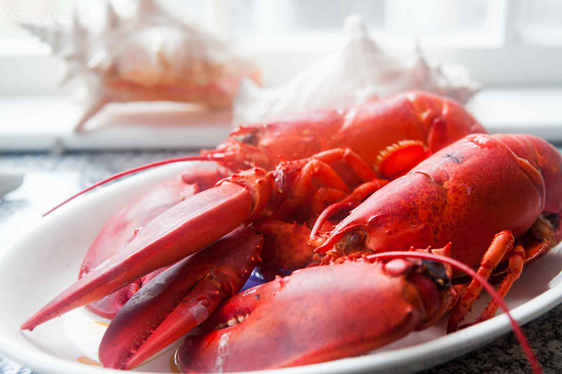 how-to-boil-eat-lobster-horiz-a-1800
